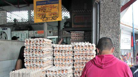 Afirman que el alza en el precio de los huevos se debe al aumento del alimentos, cartón, pabilo y bolsas   Foto William Dumont