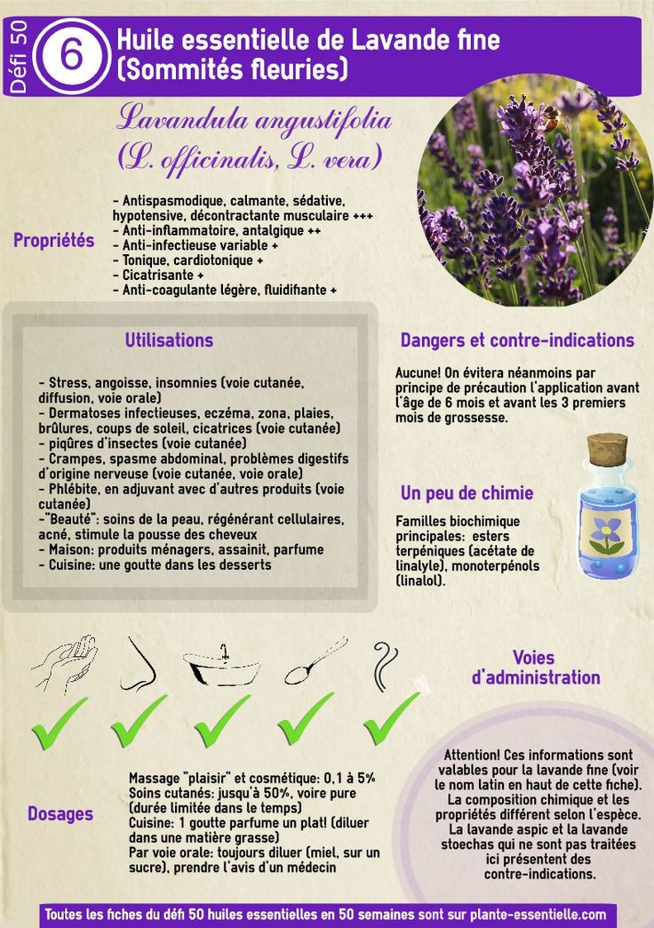 the 25 best lavande angustifolia ideas on pinterest huile essentielle lavande fine huiles