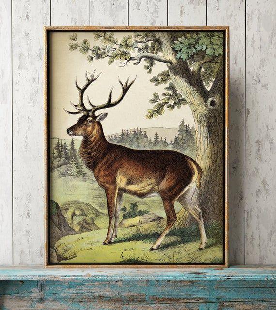 Deer Print Deer Poster Animal Poster Deer Painting Vintage Etsy Deer Poster Deer Illustration Deer Painting