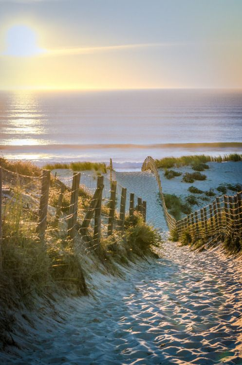 thelordismylightandmysalvation:  Seaside ~ Photography by Greg Fgd