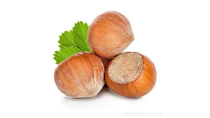 """Repurposing food supply """"waste"""" has many benefits: Farmers in Turkey are using the husks of hazelnuts as mulch, preserving water and…"""