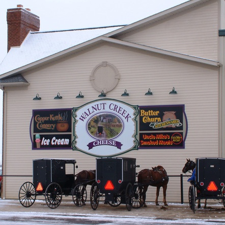 Love shopping at Walnut Creek Cheese!  When the tourists aren't as many!: Country Fav, Ohio Amish, Amish Ohio, Amish Buggy, Amish Country, Amazing Amish, Creek Ohio, Creek Cheese, Amish Indiana