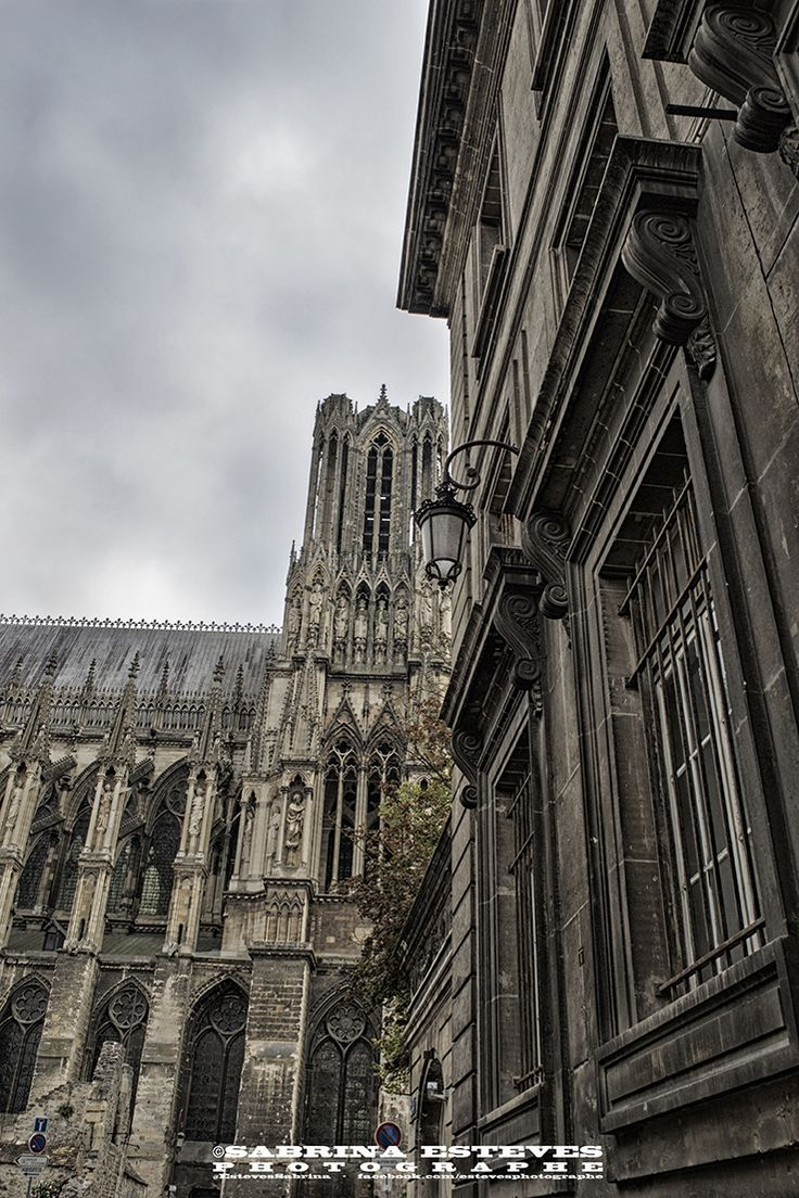 Lisse Photographie prise à Reims.  https://www.facebook.com/estevesphotographe https://500px.com/sabrinaestevesphotographe  Envie de vous offrir un tableau : http://www.alittlemarket.com/photos/fr_lisse_photo_prise_a_reims_par_sabrina_esteves_-12621529.html