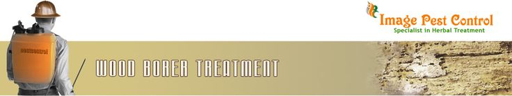 Anti Termite Treatment Bangalore