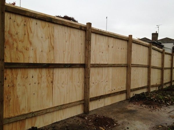 Plywood Fence Cheap Diy Privacy Fence Pinterest