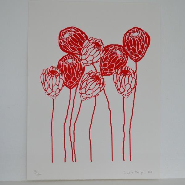 Red Protea Print - KAMERS Online Store http://shop.kamersvol.com