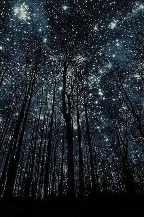 Noche de estrellas.