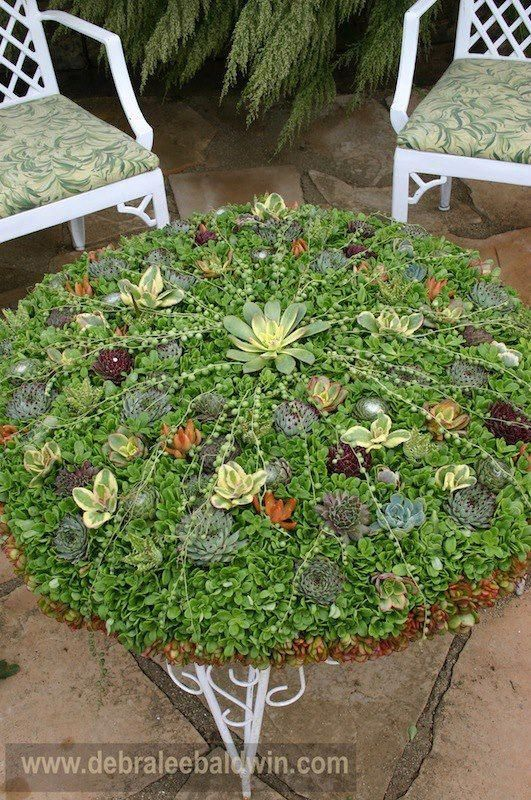 Don T Need A Coaster With This Table Top By Succulent Container Gardens