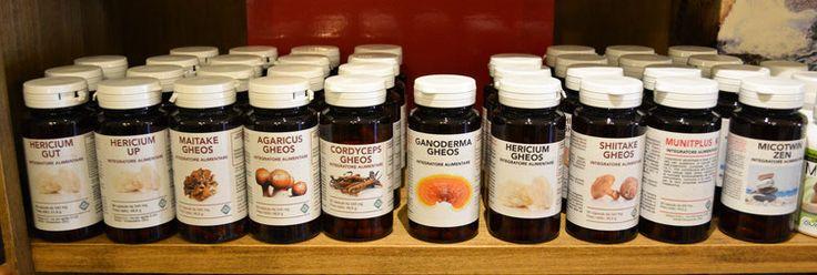 I Funghi Medicinali BIO  #funghimedicinali #erboristeria #rimedinaturali