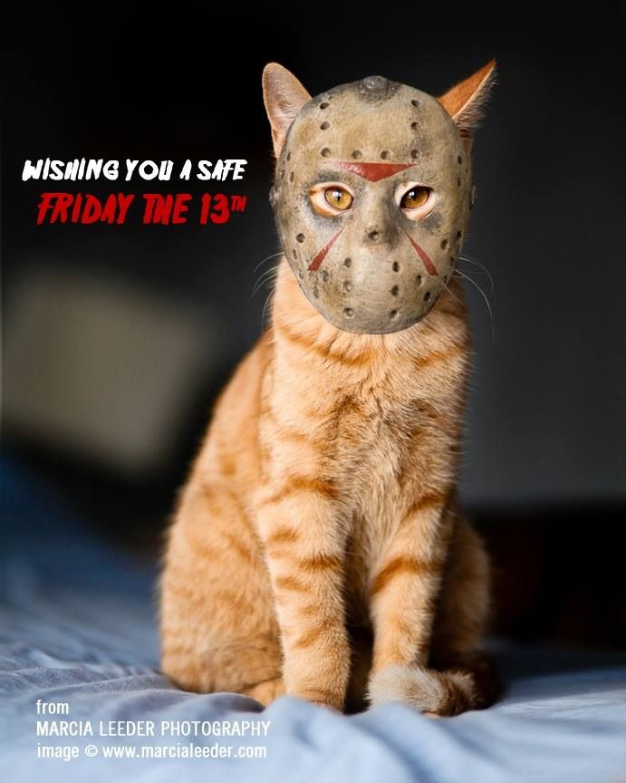 17 best images about friday the 13th on pinterest chain