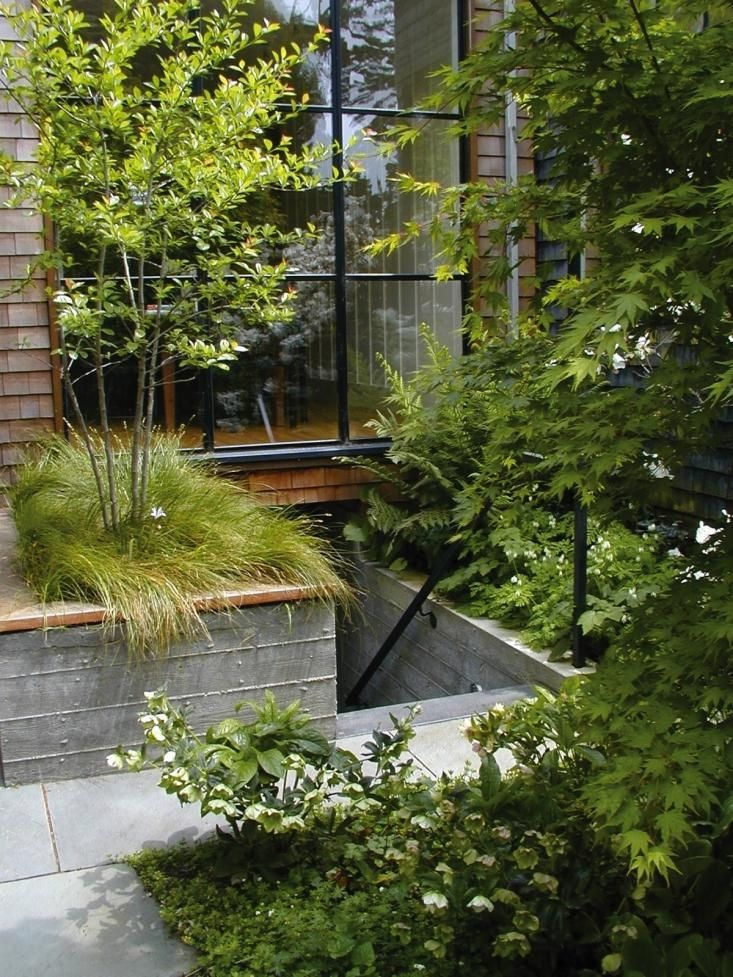 scott lewis parkside san francisco garden raised beds and staircase
