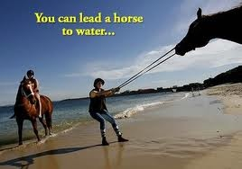 You can lead a horse to