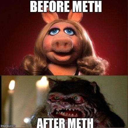 Miss piggy meme - photo#41