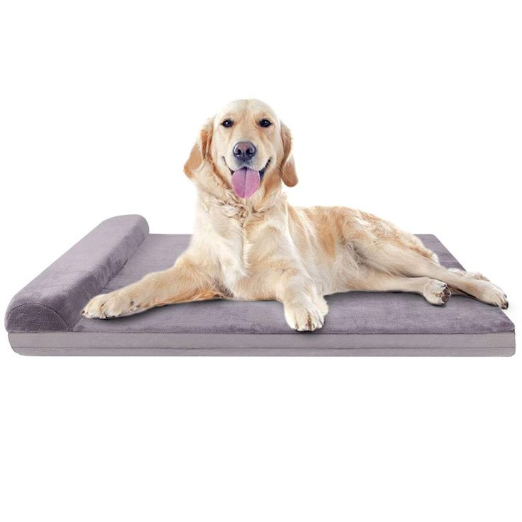 JoicyCo Dog Bed Large Foam Dog Bed Mat Washable Mattress