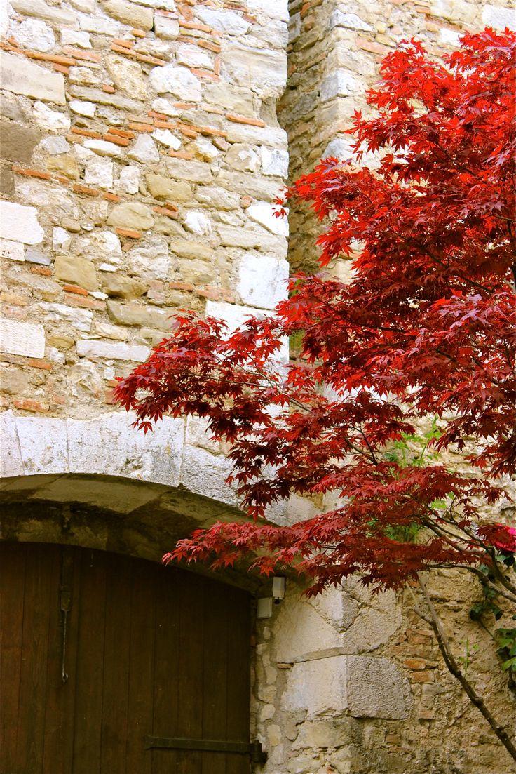 Scorci interni del Castello Baronale di F.Bruni