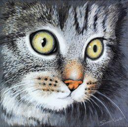 Kitten my pet cat Gigi by simon-knott-fine-artist at zippi.co.uk