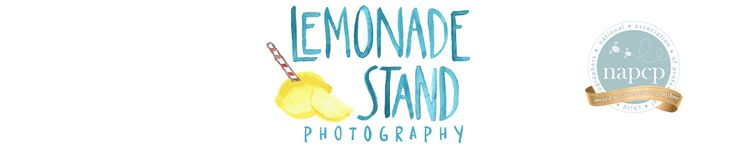 Lemonade Stand Photography Pre-Session Questionnaire