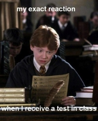 """Ron Weasley and I make the same face and everything! Then I think, """"Crap, I'm screwed."""""""