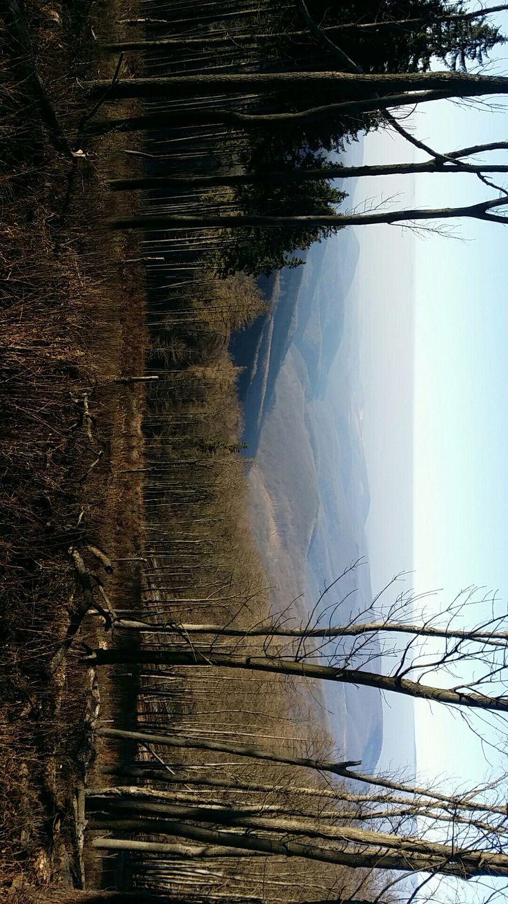 #beautiful #land