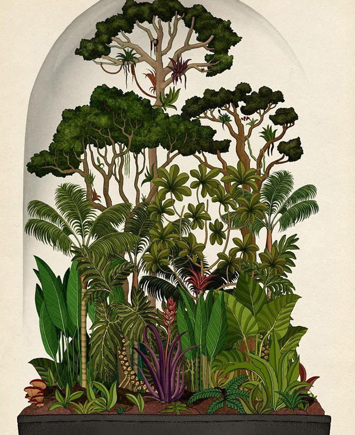 Los dibujos botánicos de Katie Scott