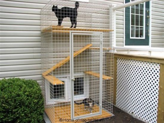 72 best catio ideas images on pinterest cat stuff cats for Indoor gardening with cats