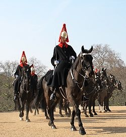 The Blues and Royals (Royal Horse Guards and 1st Dragoons) (RHG/D) is a cavalry regiment of the British Army, part of the Household Cavalry. Along with the Coldstream Guards (Household Infantry) they can trace their lineage to the new Model Army. Wearing the home Service Helmet, They are the only British Army Regiment entitled to salute without head dress. The Queen is Colonel in Chief and Anne is the Colonel