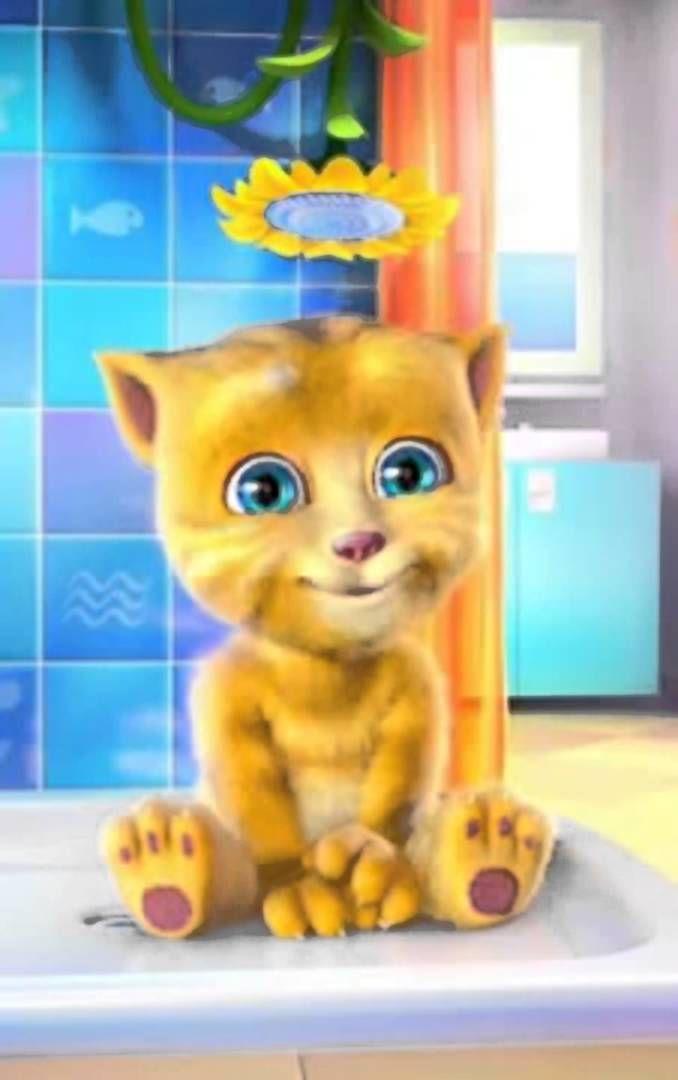 Cancion Soy Una taza Gato tom cantando soy una taza  - Canciones infantiles