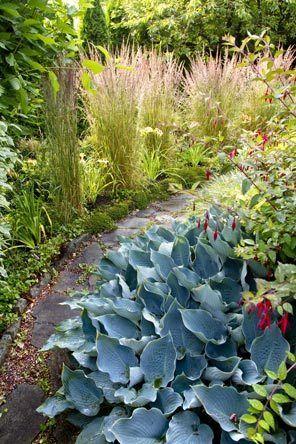 24 best images about Rain Garden Designs on Pinterest