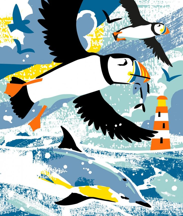 Puffins and Dolphins print illustration by Matt Johnson for Seasalt