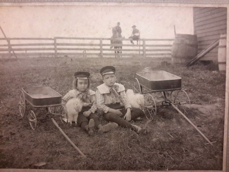 "Antique Photograph Cabinet Card Boys Toy Wagons Dog Dolls 1890s So Sweet 6""by 8"" 