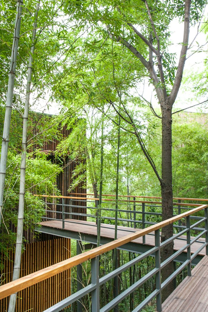 Tree top walkway to treehouses at Garden Valley - Mei Jie Mountain Hotspring resort in Liyang, China. by AchterboschZantman architecten  #treehouse #tree #top #walkway #path #bamboo #forest #nature #wood #slats