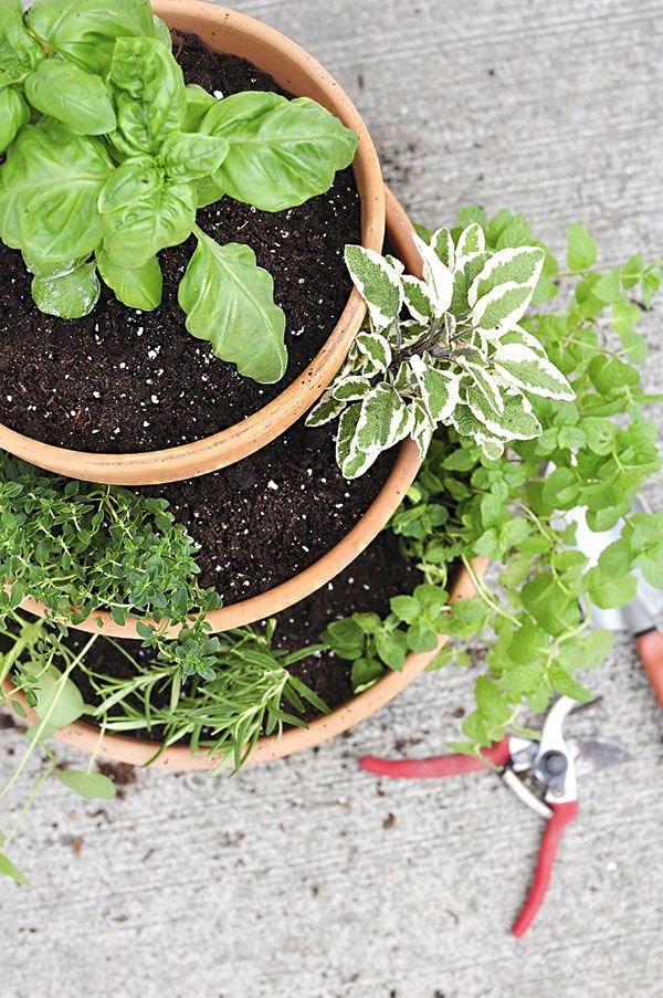 Stacked Herb Garden   DIY ideas and gardening tips