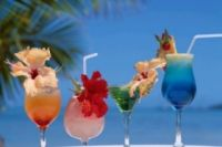 Carnival Cruise Drink Prices.