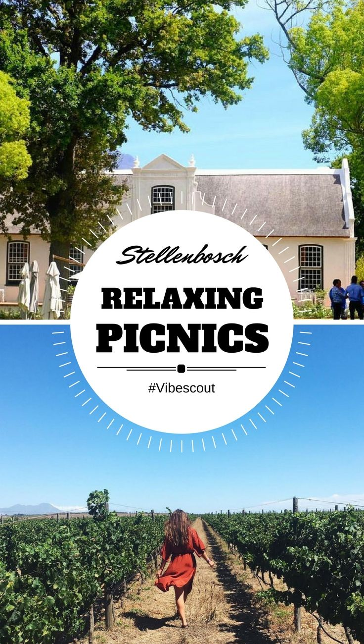 If you're looking for a more relaxed outdoor day, then a Stellenbosch picnic is a great option. Many Stellenbosch wine farms offers gorgeous picnic spots. #stellenboschpicnic#winefarmspicnic