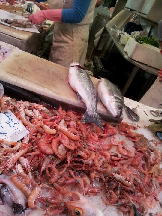 Fresh fish from Costa Brava