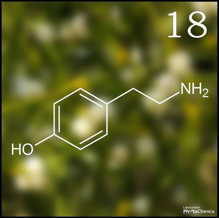 25 days of #PhytoChristmas : Chemistry Edition ! ************************************************************** I'm a poisonous alkaloid found in the holiday plant mistletoe. What am I?  Yesterday's answer : Theobromine  #phytochemia #teamphytochemia #phytofamous #laboratory #lab #essentialoils #chemistryisfun #scienceisfun #phytochemistry #saguenay #quebec #phyto #scienceoninstagram #chemist #chemistry #scientist #sciencelover #naturalproducts #instascience #uqac