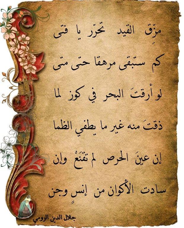 حكايات وعبر من المثنوى Sweet Words Morning Quotes Words