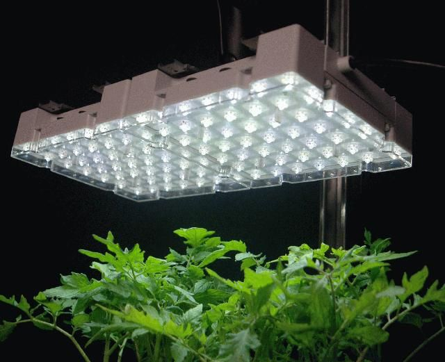 Indoor Gardening Lights