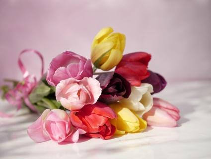 Tulpen als Brautstrauss - ungewöhnlich, aber selten schön