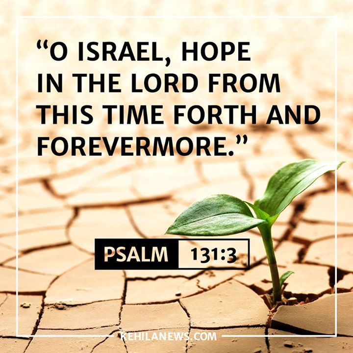 """O Israel hope in the Lord from this time forth and forevermore.""  Psalm 131:3  LIKE=AMEN! Messianic Jewish News from Israel Kehila News"