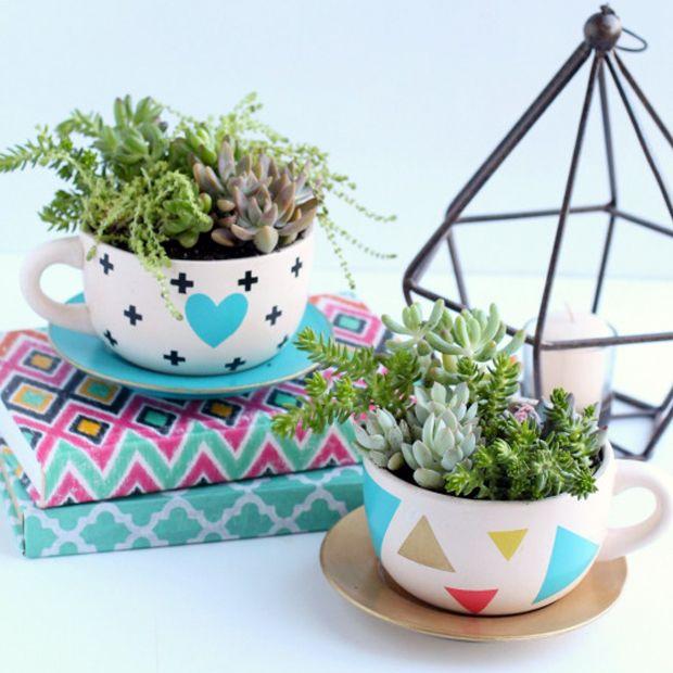 Tendência na decoração: plantar suculentas e cactos em xícaras. Aprenda passo a passo.
