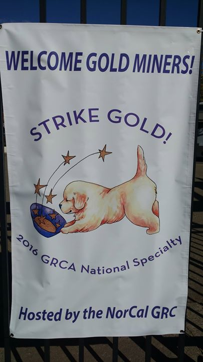 Another 'Gold Week' here at El Dorado County Fairgrounds & Event Center - welcome to the Golden Retriever Clubs!!