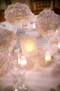 White Wedding - Table Number