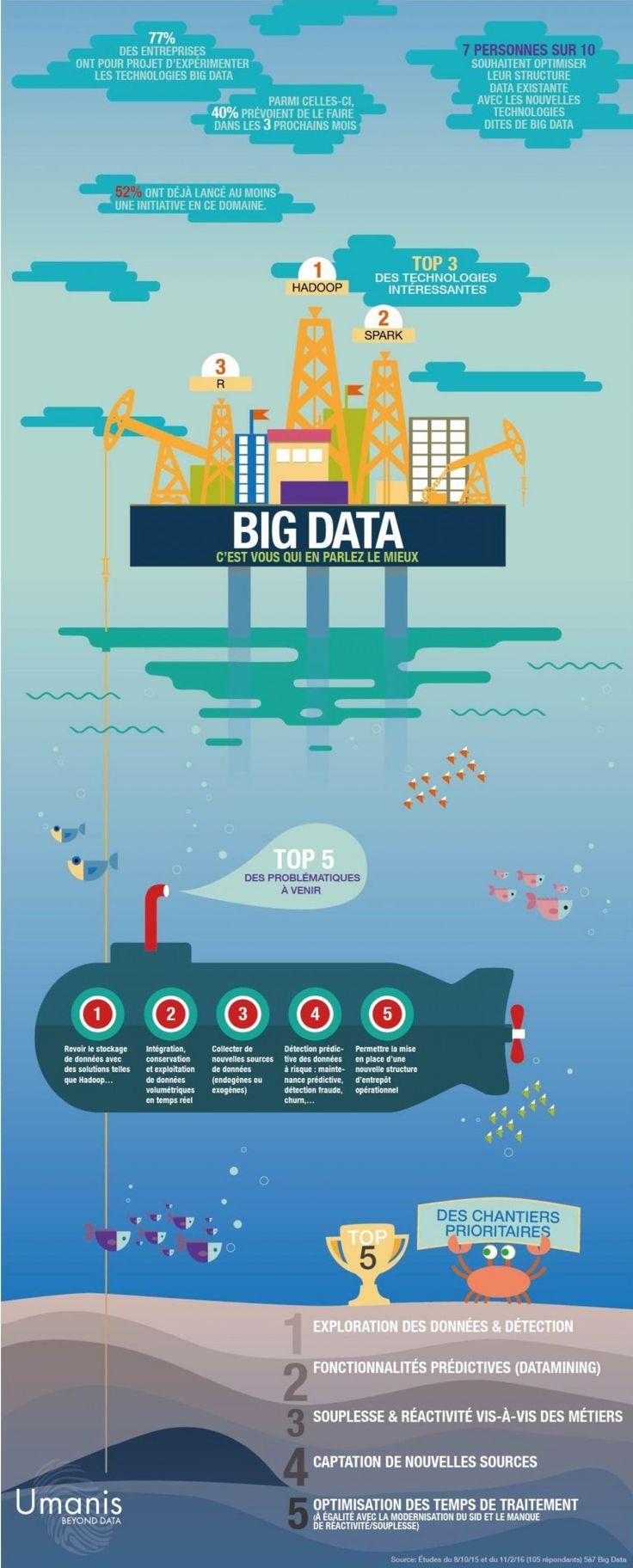 big-data-umanis-france