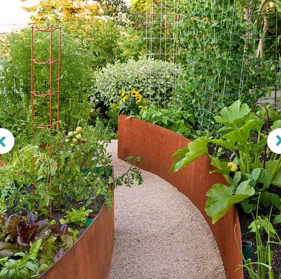 Herbs and veg in corten steel raised beds