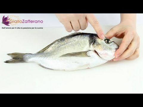 How to clean and fillet a round fish - cooking tutorial