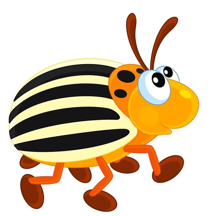 234 best bugs and butterfies clip art images on pinterest clip art rh pinterest co uk clipart insects black and white clipart insects