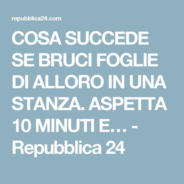 COSA SUCCEDE SE BRUCI FOGLIE DI ALLORO IN UNA STANZA. ASPETTA 10 MINUTI E… - Repubblica 24