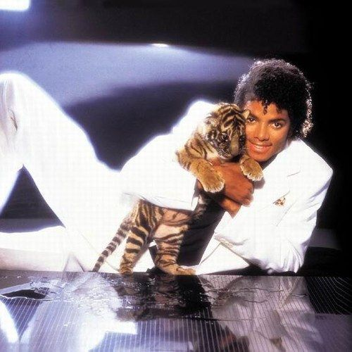 in 1982 I loved this photo of Michael Jackson.  He was a musical genius. He looks so sweet, soft and cuddly as he holds the baby tiger