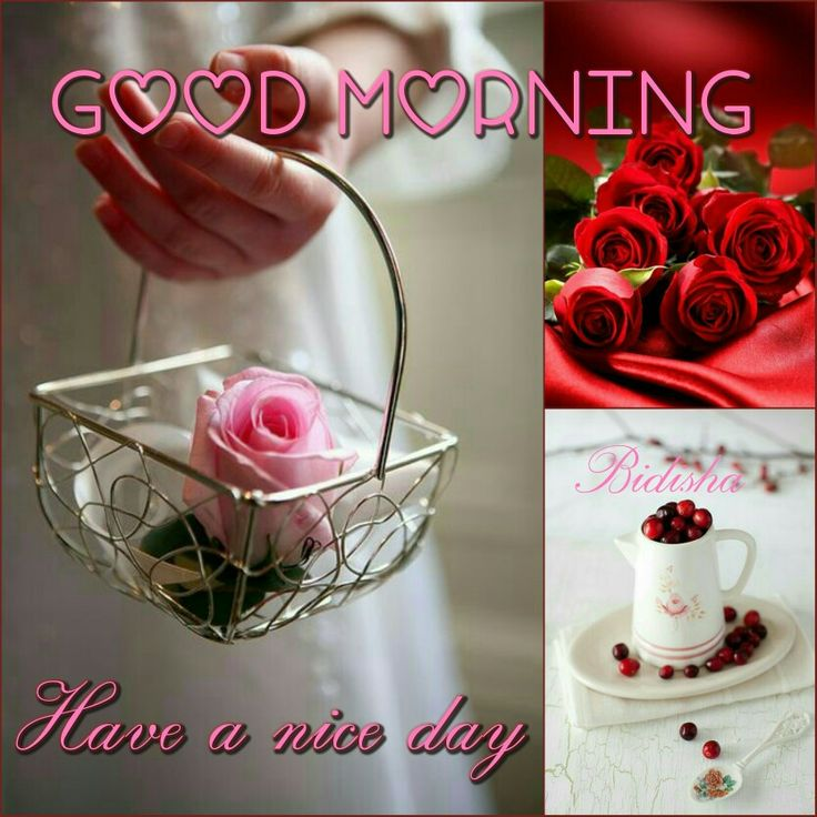 Good morng